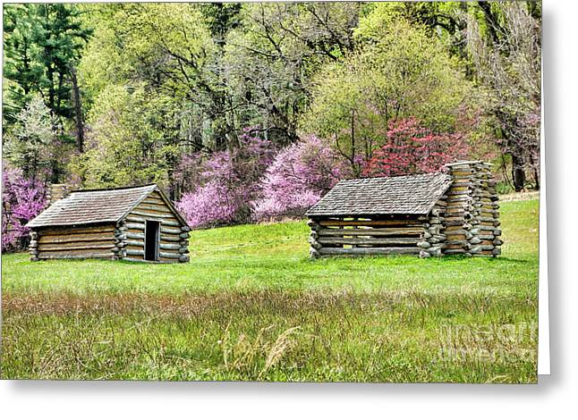 On A Hill At Valley Forge Greeting Card by Olivier Le Queinec