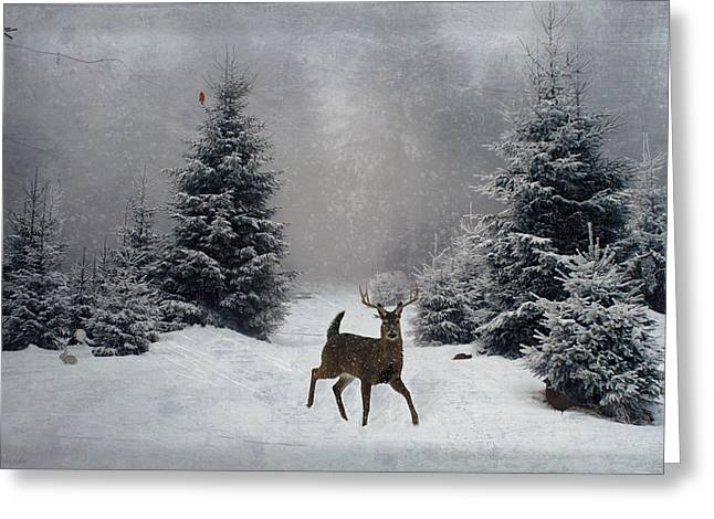 On A Snowy Evening Greeting Card by Lianne Schneider