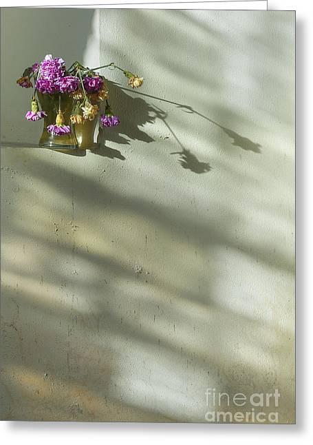 On A Wall Greeting Card by Svetlana Sewell