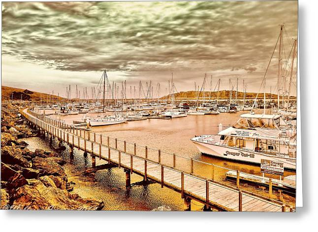 On Any Day Greeting Card by Wallaroo Images