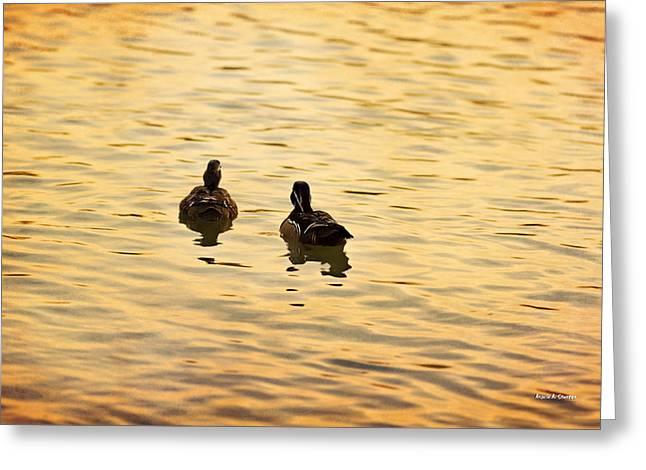 On Golden Pond Ducks Greeting Card by Angela A Stanton