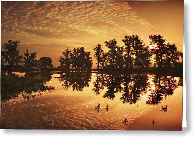 On Golden Ponds Greeting Card