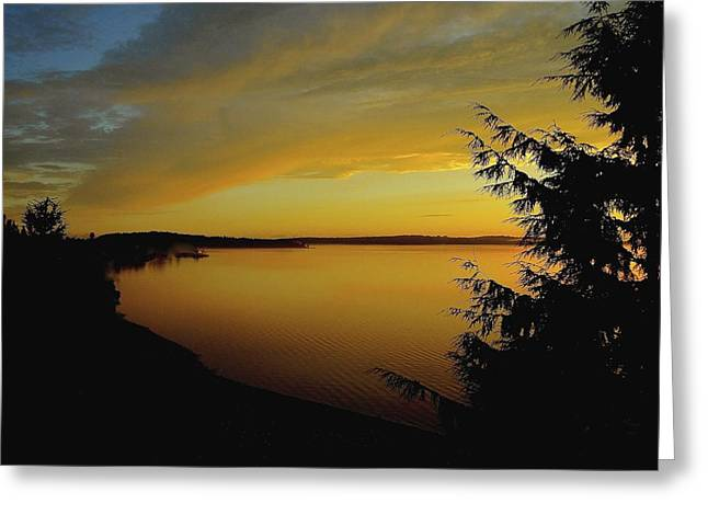 On Golden Puget Sound Greeting Card