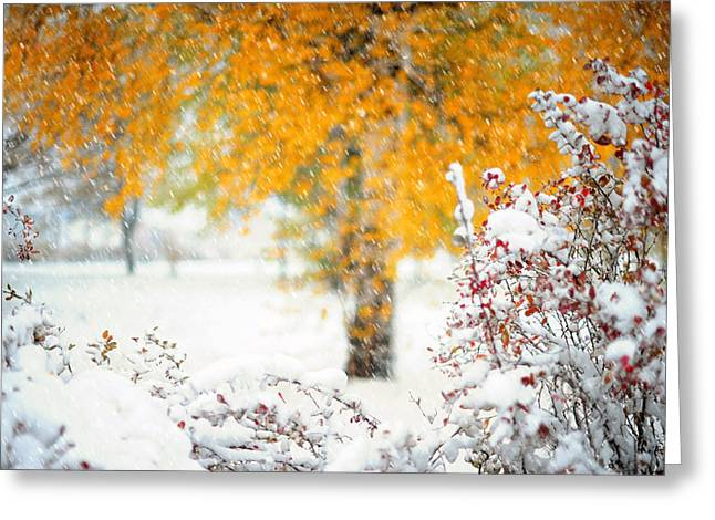 On The Edge Of Autumn Greeting Card