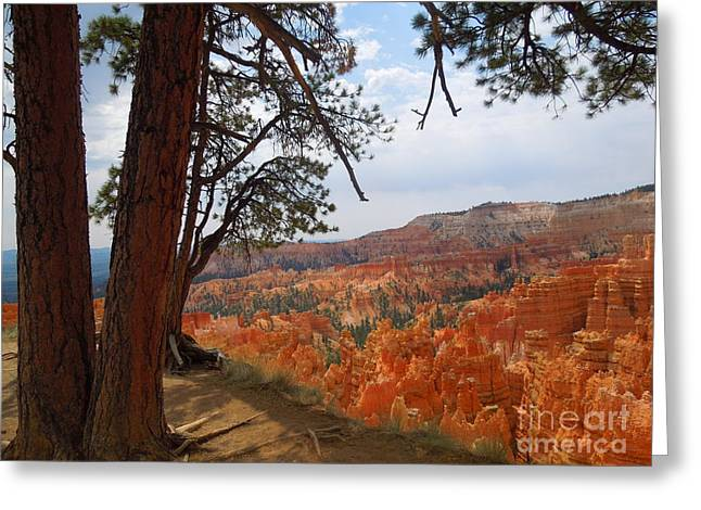 On The Edge Of Bryce Canyon Greeting Card