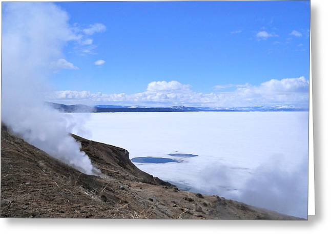 Greeting Card featuring the photograph On The Edge Of Lake Yellowstone by Michele Myers