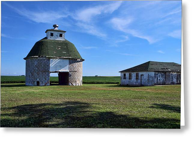 On The Farm 2 Greeting Card by Tom Druin