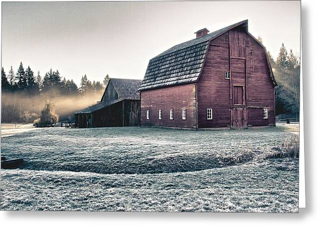 On The Farm Greeting Card by Scott Holmes