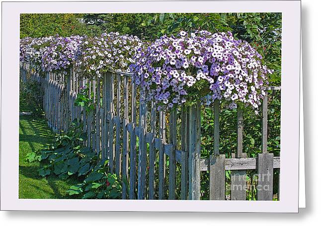 On The Fence Greeting Card by Ann Horn