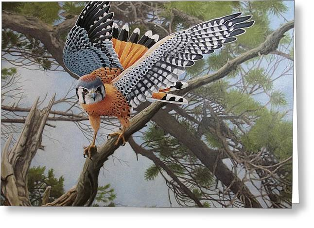On The Hunt Greeting Card by Ken Everett