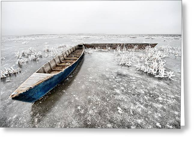 Greeting Card featuring the photograph On The Ice... by Okan YILMAZ
