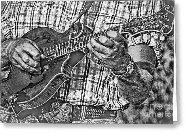 On The Mandolin Greeting Card by Robert Frederick