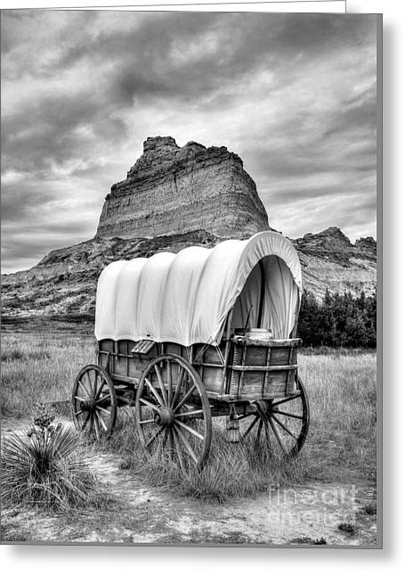 On The Oregon Trail 3 Bw Greeting Card by Mel Steinhauer
