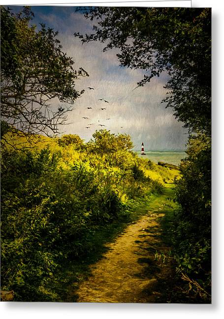 On The Path To The Sea Greeting Card