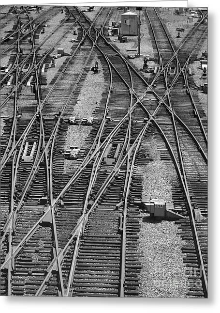 On The Right Track? Greeting Card by ELDavis Photography