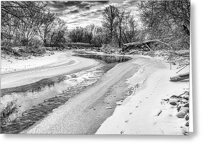 Greeting Card featuring the photograph On The Riverbank Bw by Garvin Hunter