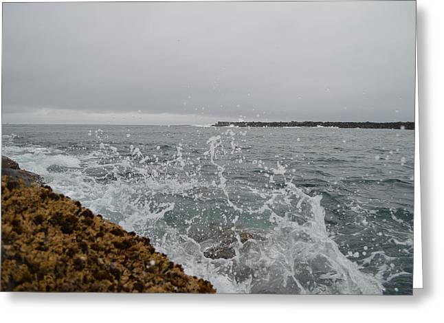 On The Rocks Greeting Card by Sheldon Blackwell