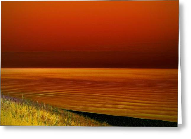 On The Shore Greeting Card by Michelle Calkins