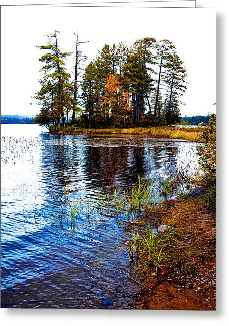 On The Shore Of Raquette Lake Greeting Card by David Patterson