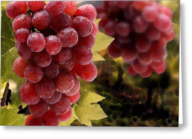 On The Vine Greeting Card by Cole Black