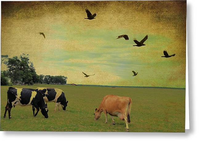 On This Green Earth Greeting Card by Jan Amiss Photography