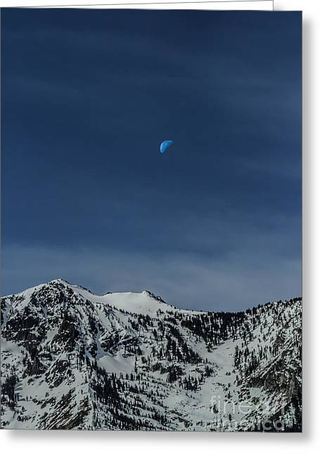 Once In A Blue Moon Greeting Card by Mitch Shindelbower