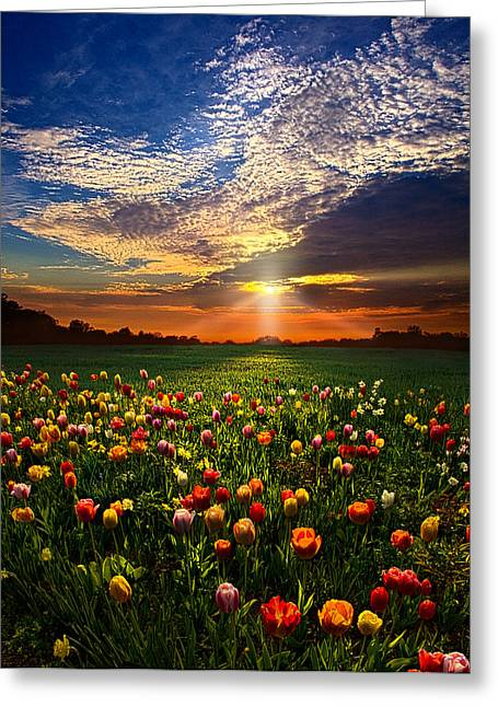 Once Upon A Time Greeting Card by Phil Koch