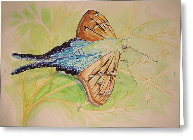 One Day In A Long-tailed Skipper Moth's Life Greeting Card