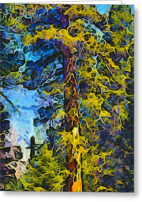 One Giant Abstract Sequoia Greeting Card by Barbara Snyder