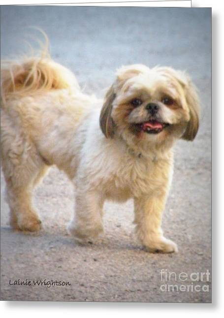 One Happy Little Dog Greeting Card by Lainie Wrightson