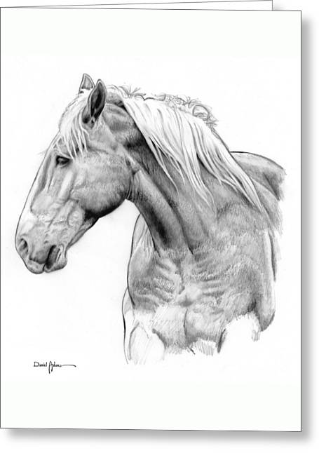 Da134 One Horse Daniel Adams  Greeting Card