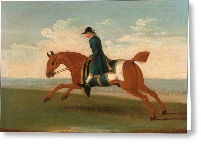 One Of Four Portraits Of Horses - A Chestnut Racehorse Greeting Card