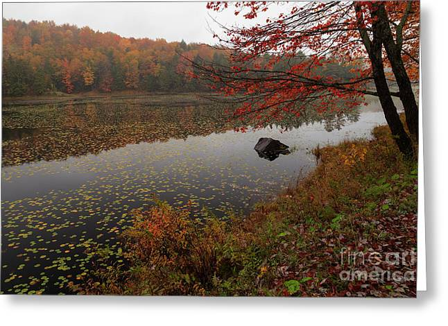 One Of The Worcester Ponds Greeting Card by Charles Kozierok