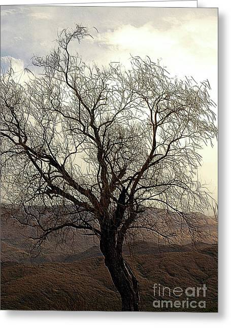 One Tree Greeting Card by Kathleen Struckle