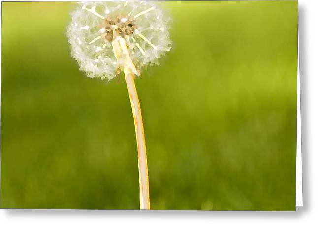 Greeting Card featuring the digital art One Wish  by Artist and Photographer Laura Wrede
