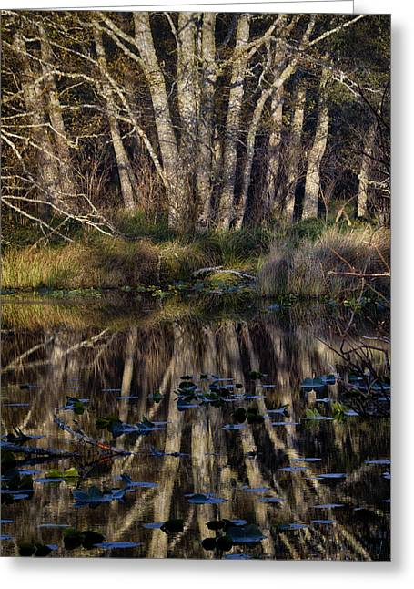 O'neil Lake Greeting Card by Robert Woodward