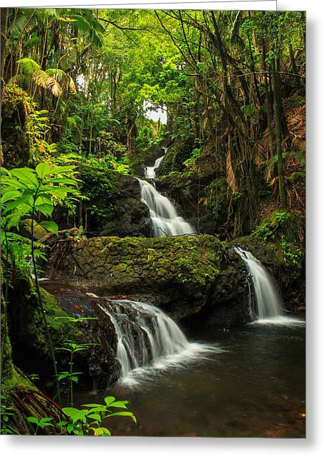 Onomea Falls Greeting Card by James Eddy