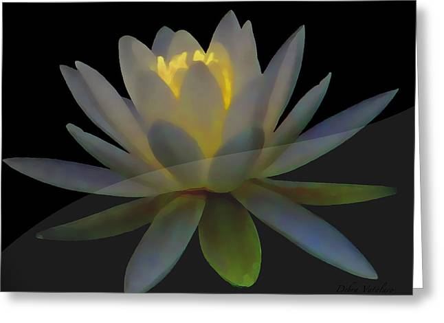 Opal Lotus Swish Greeting Card by Debra     Vatalaro