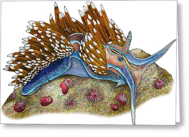 Opalescent Nudibranch Greeting Card