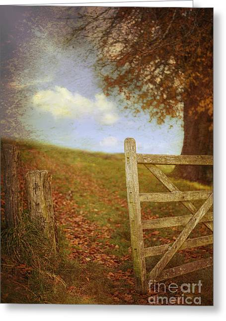 Open Country Gate Greeting Card by Amanda Elwell