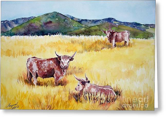 Open Range Patagonia Greeting Card by Summer Celeste
