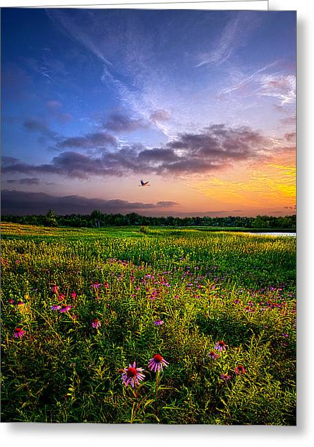 Open Spaces Greeting Card by Phil Koch
