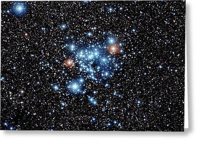 Open Star Cluster Ngc 3766 Greeting Card by European Southern Observatory