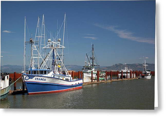 Or,  Astoria, East Basin Moorage Greeting Card by Jamie and Judy Wild