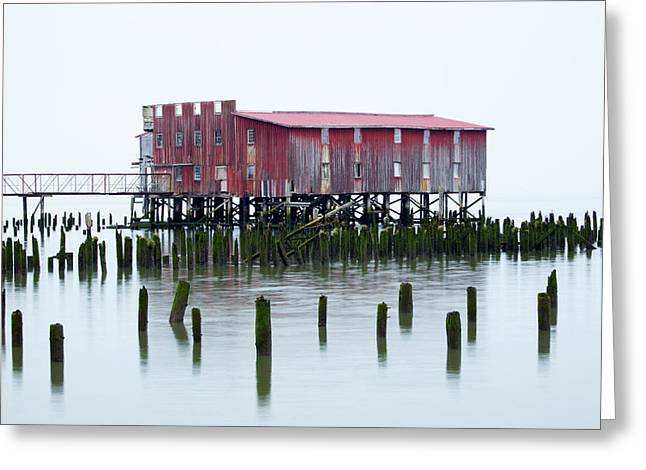 Or, Astoria, Old Fish Cannery Greeting Card by Jamie and Judy Wild