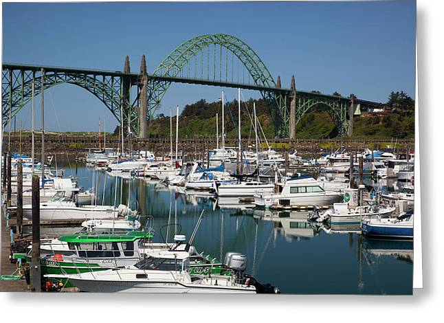 Or, Newport, Marina With Pleasure Boats Greeting Card by Jamie and Judy Wild