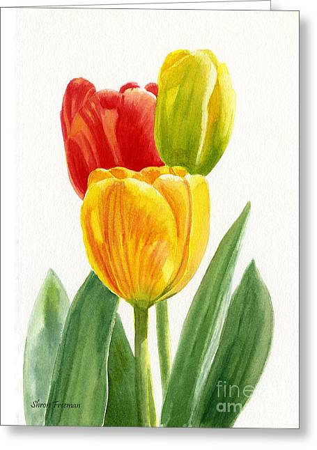 Orange And Yellow Tulips With Bud Greeting Card