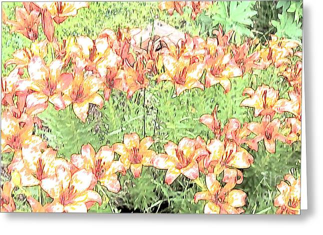 Orange Asiatic Lilies Greeting Card by Beverly Guilliams