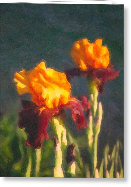 Orange Bearded Irises Greeting Card by Omaste Witkowski