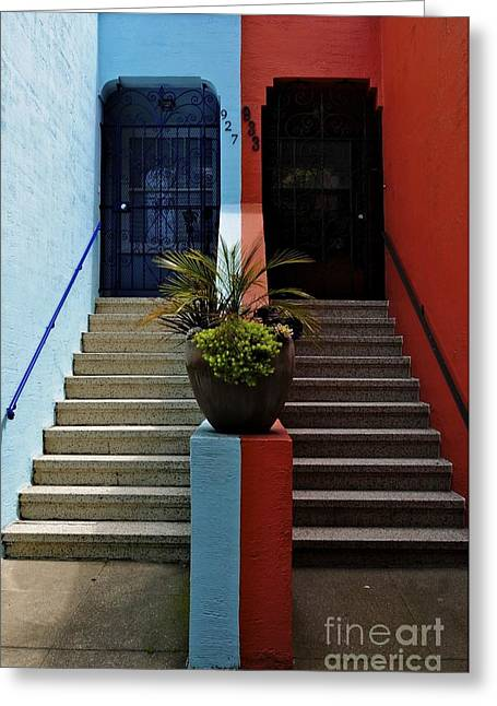 Greeting Card featuring the photograph Orange - Blue With Plant Between by Sherry Davis